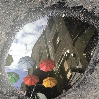 picture of reflection in a puddle